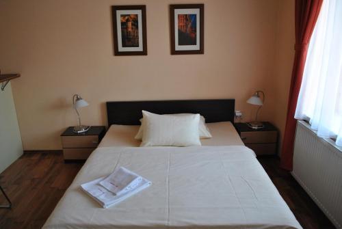 Hotel Pictures: Larischova vila, Krnov