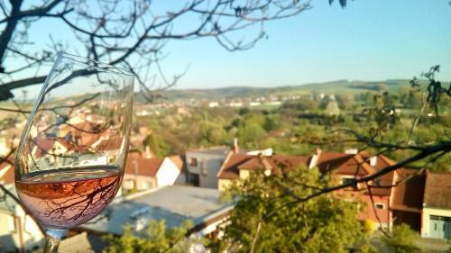 Hotel Pictures: , Uherské Hradiště