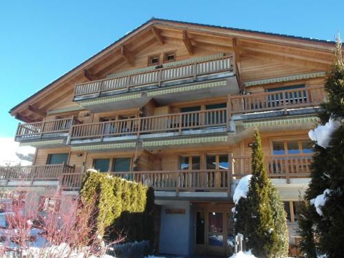 Hotel Pictures: Apartment Aurochs 218, Bagnes