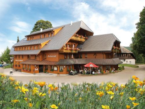 Hotel Pictures: Gasthof Schwarzwaldhaus, Bernau im Schwarzwald
