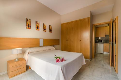 Hotel Pictures: Apartamentos Turísticos Covadonga, Bormujos