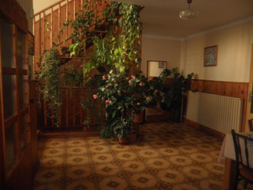 Hotel Pictures: , Hrušovany nad Jevišovkou