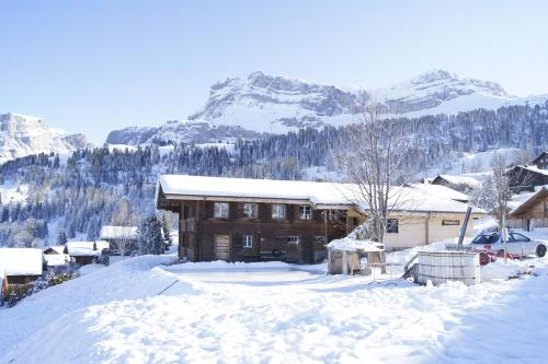 Hotel Pictures: , Axalp