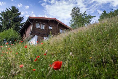 Hotel Pictures: Werrapark Resort Ferienhausanlage Am Sommerberg, Masserberg