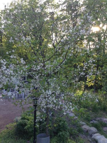 Hotel Pictures: , Turku
