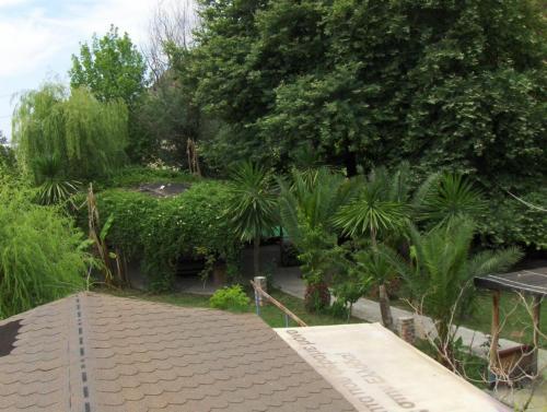 Fotos do Hotel: Tropikal Bunec, Piqeras