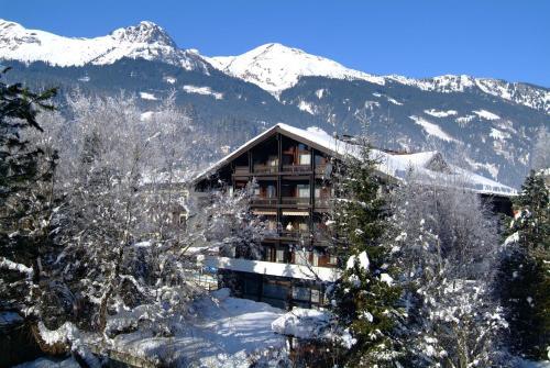 ホテル写真: Appartementhaus Gastein, バート・ホーフガシュタイン