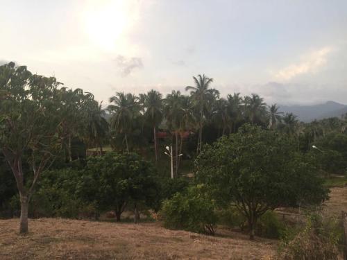 Hotel Pictures: Posada Natu, Bonda