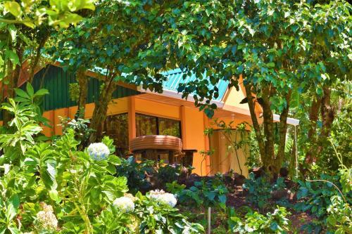 Hotel Pictures: , Monteverde