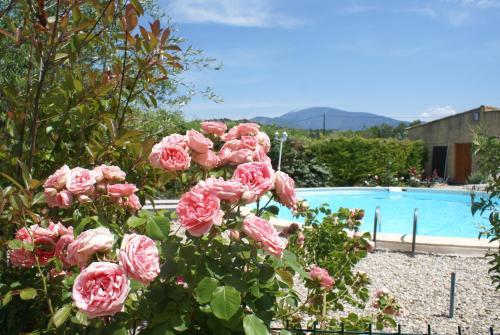 Hotel Pictures: Les Romarins, Crestet