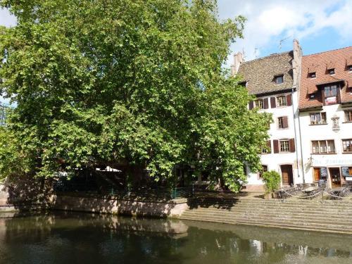 Appartement Au Petit Bois Vert