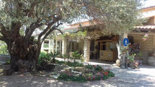 Bed And Breakfast Anticomar
