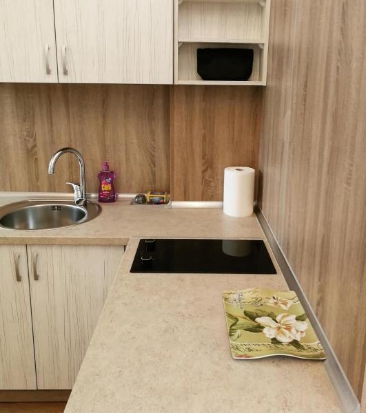 酒店图片: Apartment Tara, 特雷比涅