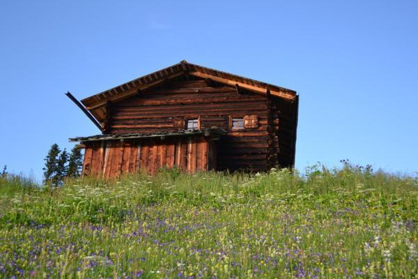 Hotel Pictures: Alphütte, Sertig Döfli