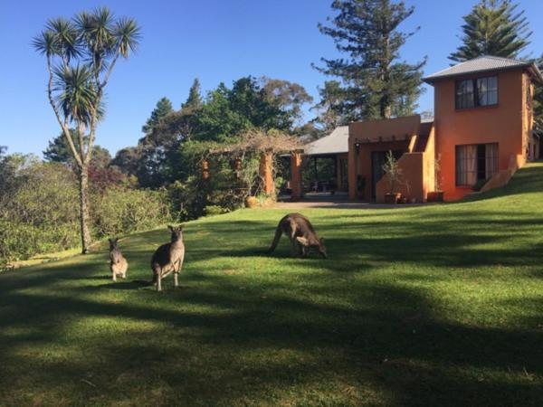 Fotos del hotel: Mountain Top House, Blackheath