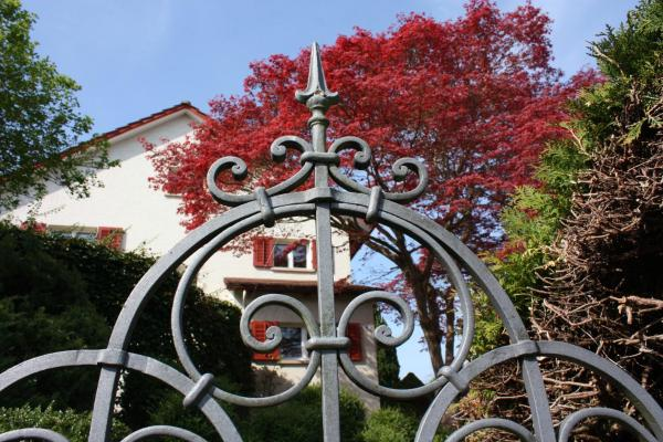 Hotel Pictures: Villa Hugo, Kreuzlingen