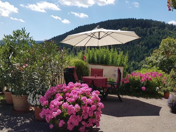 Hotelbilleder: Haus 'Rauferhof', Lenzkirch