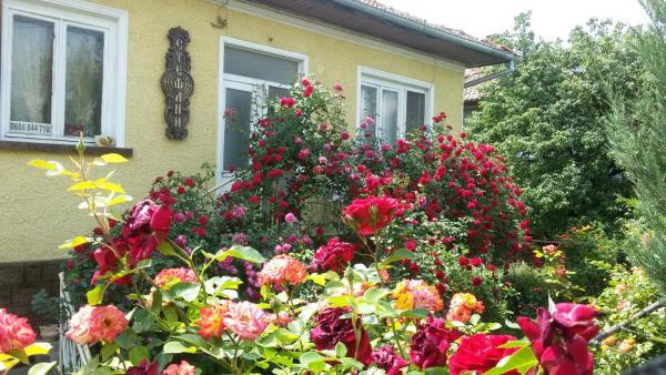Fotos de l'hotel: Guest House Stefani, Elena