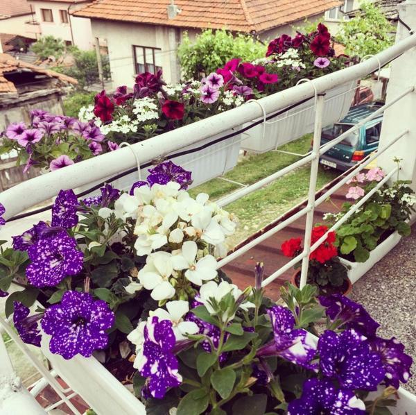 Hotellikuvia: Иван Туйковата Къща, Teteven
