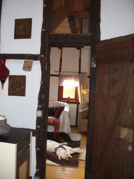 Hotel Pictures: Zwergenschule, Wirft