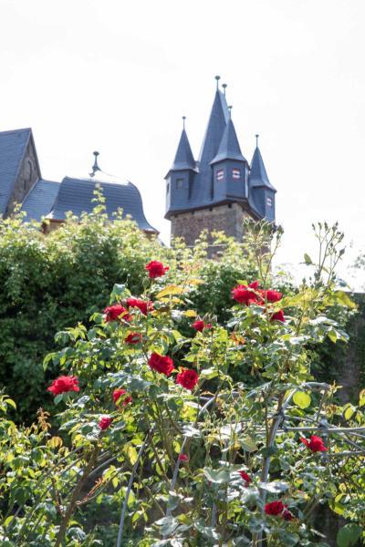 Hotel Pictures: Schloss Spangenberg, Spangenberg