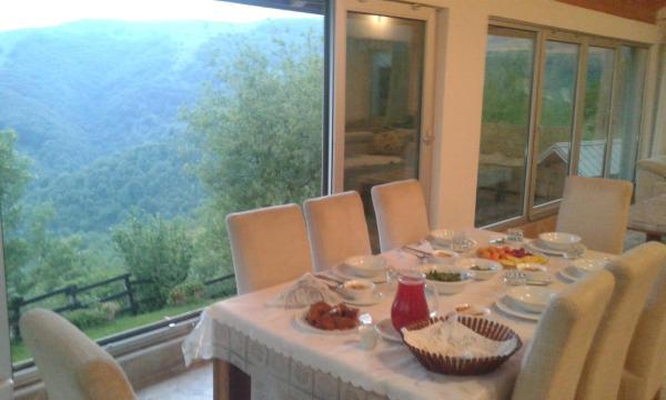 ホテル写真: Holiday home Vila Bjelašnica, Bjelašnica