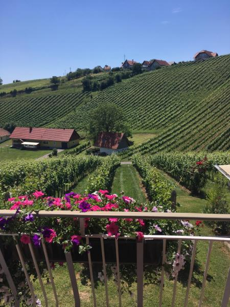 Hotel Pictures: Weinbau Winzerzimmer Veronika und Alfred Klöckl, Klöch