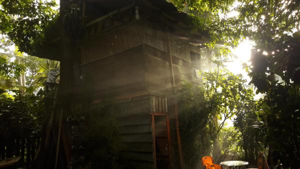 Hotel Pictures: The Jungle Guest House, Capurganá