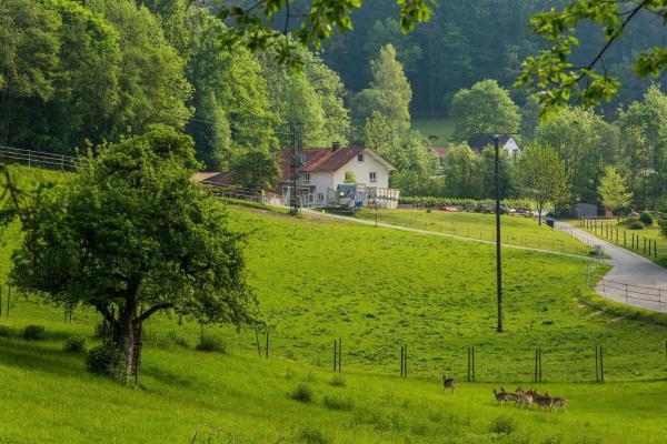 """Hotel Pictures: """"Natur pur"""" Refugium für Mensch und Tier, Horgenzell"""