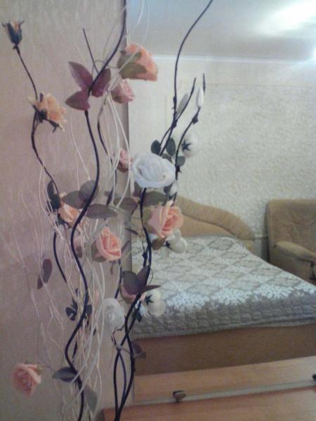 Hotel Pictures: Apartments on Orlovskogo, Brest