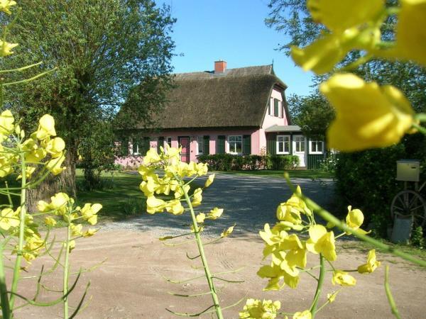 Hotelbilleder: Hof-Ruegentreu-Reetdach-Oase-OG-Wohnung-Apfelgarten, Garz