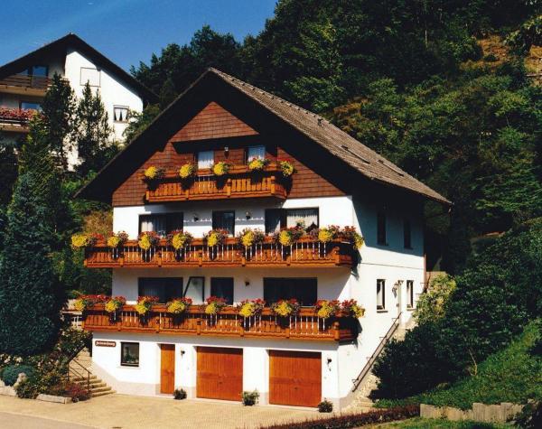 Hotel Pictures: Ferienwohnung-Haus-Armbruster, Bad Rippoldsau-Schapbach