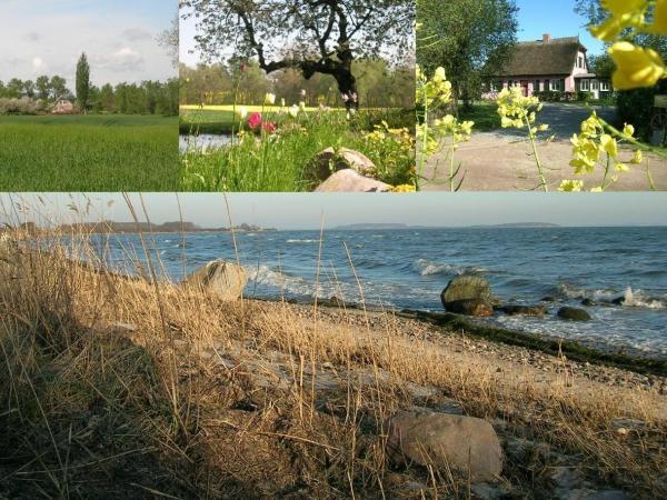 Hotel Pictures: Hof-Ruegentreu-Reetdach-Oase-EG-Wohnung-Rosengarten, Garz