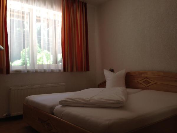 ホテル写真: Hotel Zerres, Partenen
