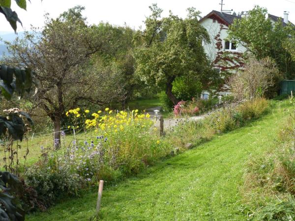 Hotellikuvia: Haus Sanitas, Berg bei Rohrbach