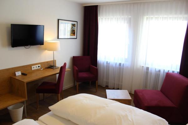 Hotel Pictures: Gasthof und Pension zum Löwen, Hirschberg an der Bergstraße