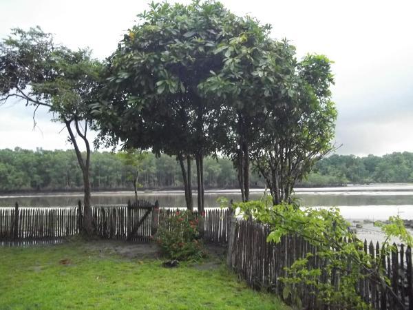Hotel Pictures: Paraiso do Marajo, Salvaterra
