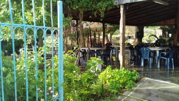 ホテル写真: Tropikal Bunec, Piqeras