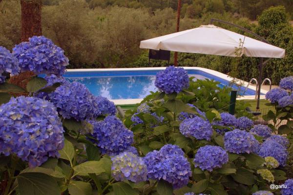 Hotel Pictures: Casa Rural El Pilar, Acebo