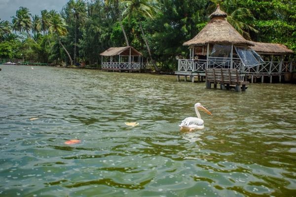 Hotel Pictures: Hôtel Kafolo Lagoon, Bingerville