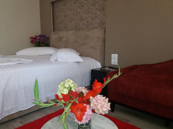 Foto Hotel: Hotel Erandi, Rinas