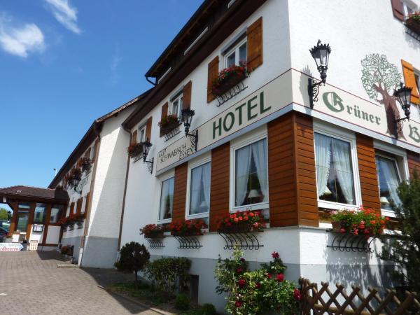 Hotelbilleder: Hotel Landgasthof Gruner Baum, Hochdorf