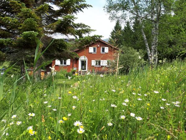 Hotel Pictures: Chalet Chic, Wildhaus