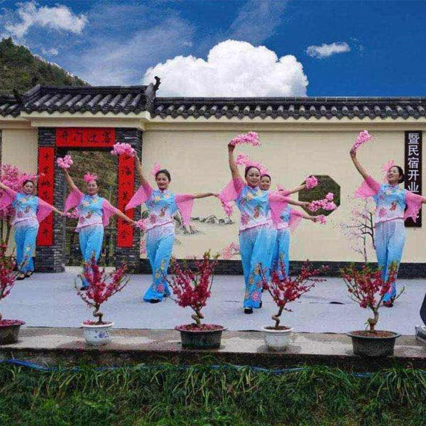 Hotel Pictures: Slow-Pace Guest House, Lishui