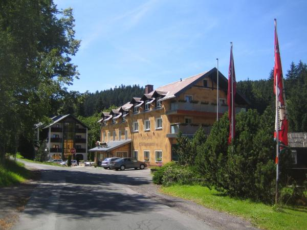 Hotelbilleder: Hotel Ladenmühle, Kurort Altenberg