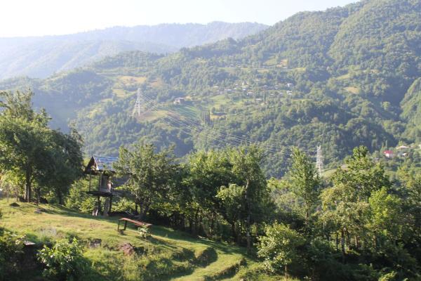 Φωτογραφίες: Diamond mountain guest house, Ts'khmorisi