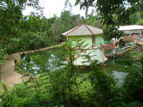 ホテル写真: Jungle Track Eco Lodge, Kalawana