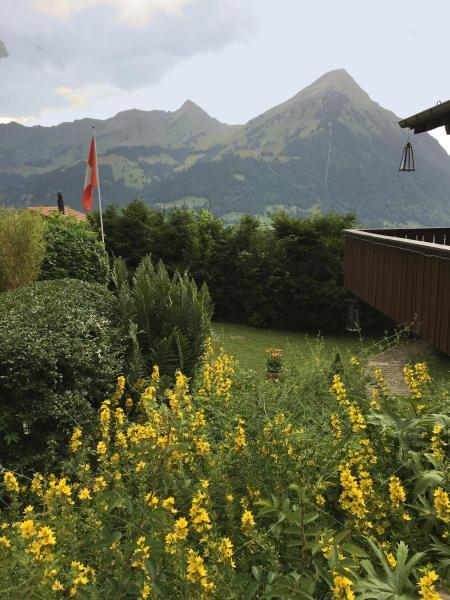 Hotel Pictures: Chalet Tannegg, Reichenbach