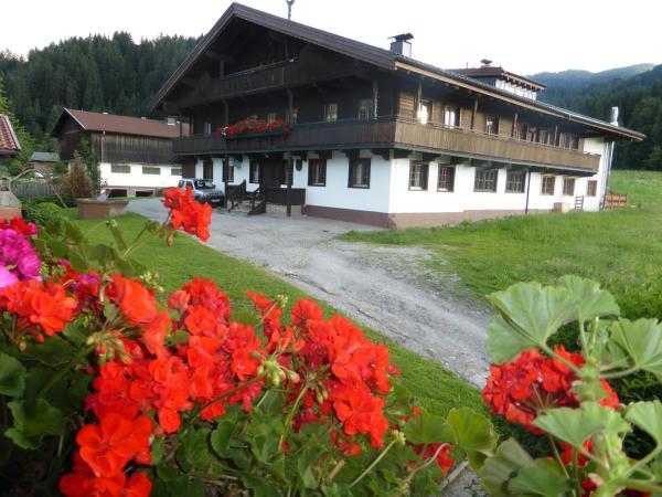 酒店图片: Pension Schwaighof, 维尔德舍瑙