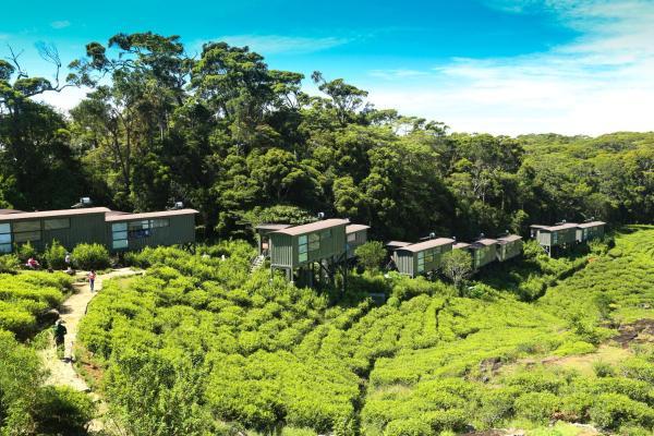 ホテル写真: The Rainforest Ecolodge - Sinharaja, Deniyaya